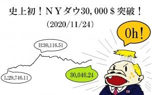 Ny3000020201124