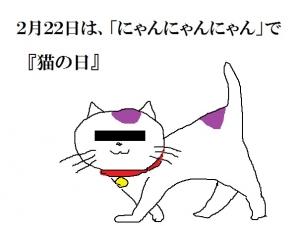 Photo_20200221204301